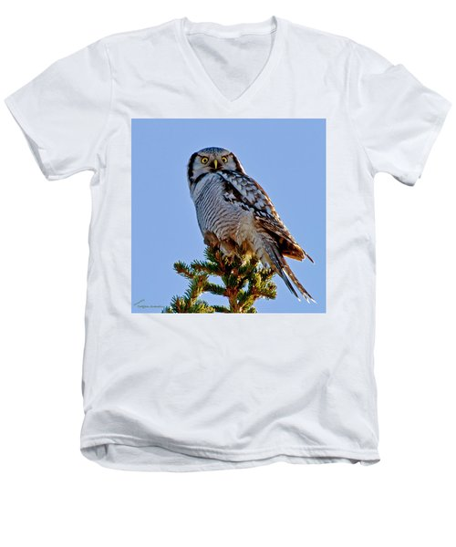 Hawk Owl Square Men's V-Neck T-Shirt