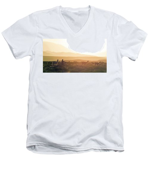 Herd Of Llamas Lama Glama In A Desert Men's V-Neck T-Shirt by Panoramic Images