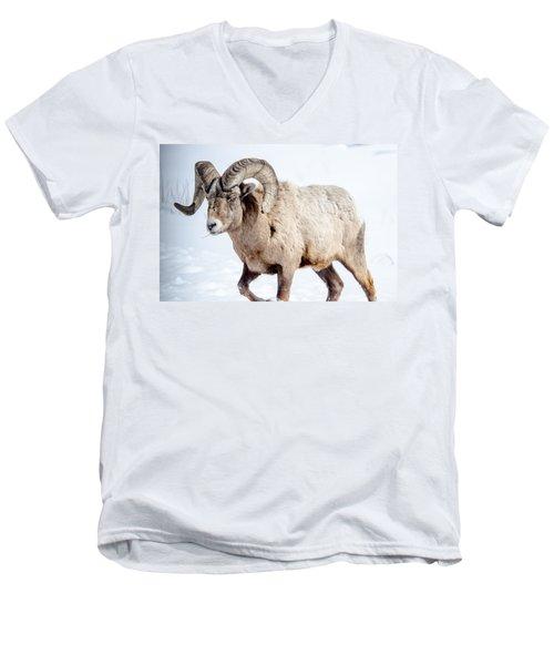Big Horns On This Big Horn Sheep Men's V-Neck T-Shirt