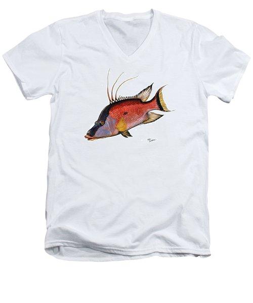 Hogfish On White Men's V-Neck T-Shirt