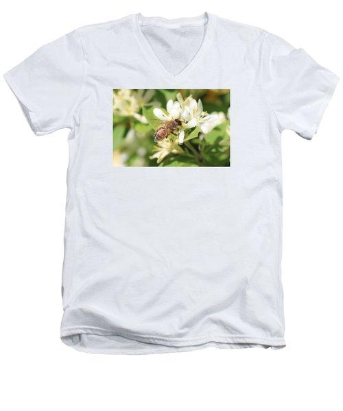Honeybee And Honeysuckle Men's V-Neck T-Shirt by Lucinda VanVleck
