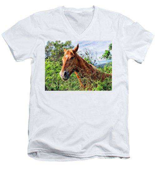 Men's V-Neck T-Shirt featuring the photograph Horse 1 by Dawn Eshelman