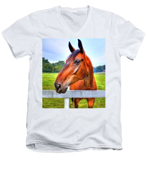 Horse Closeup Men's V-Neck T-Shirt
