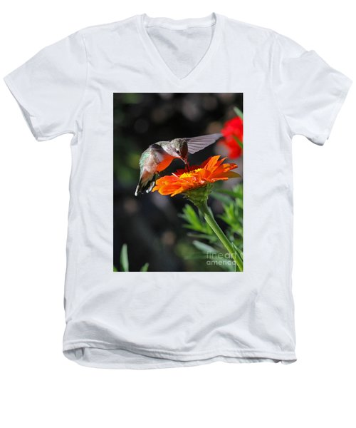 Hummingbird And Zinnia Men's V-Neck T-Shirt by Steve Augustin