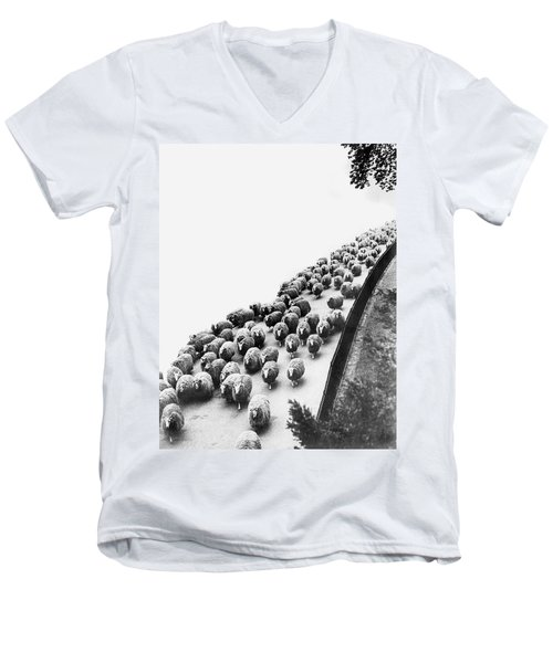 Hyde Park Sheep Flock Men's V-Neck T-Shirt by Underwood Archives