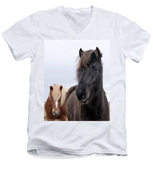 Iceland Horses Men's V-Neck T-Shirt