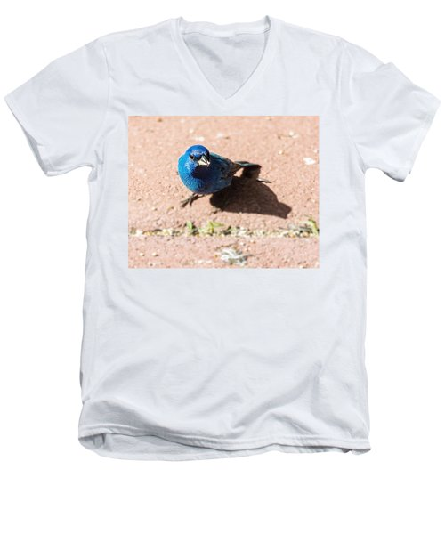 Indigo Bunting Men's V-Neck T-Shirt