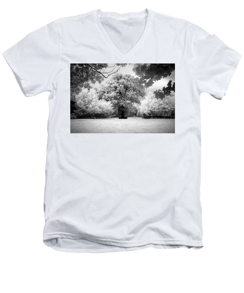 Infrared Majesty Men's V-Neck T-Shirt
