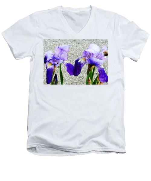 Men's V-Neck T-Shirt featuring the photograph Irises by Jasna Dragun