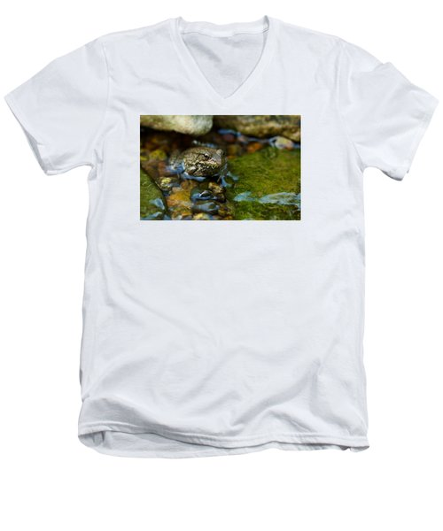 Men's V-Neck T-Shirt featuring the photograph Is There A Prince In There? - Frog On Rocks by Jane Eleanor Nicholas