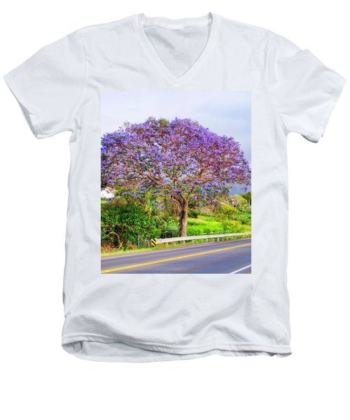 Jacaranda 4 Men's V-Neck T-Shirt
