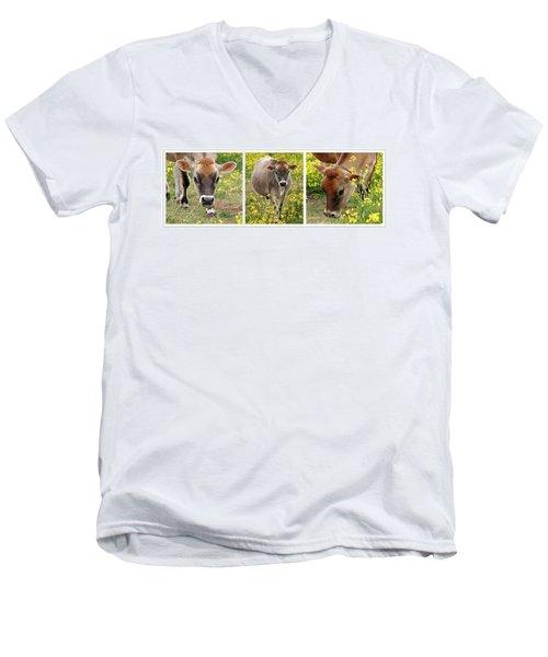 Jersey Fields Of Gold Men's V-Neck T-Shirt