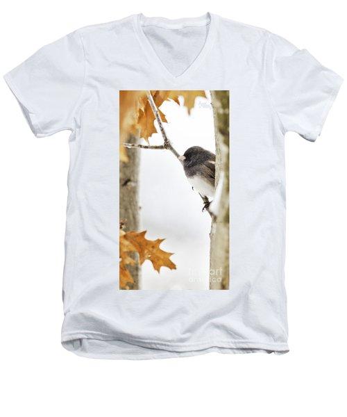 Junco And Oak Men's V-Neck T-Shirt