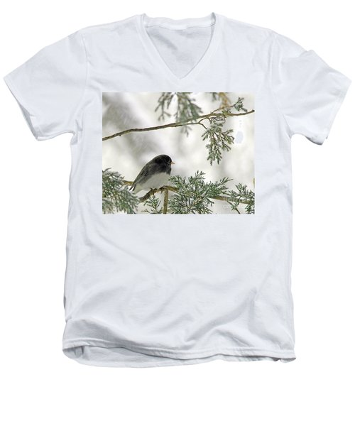 Men's V-Neck T-Shirt featuring the photograph Junco In Snowstorm by Paula Guttilla