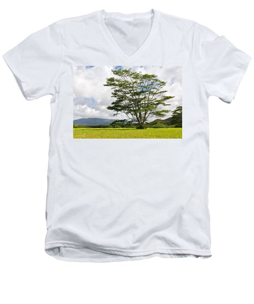 Kauai Umbrella Tree Men's V-Neck T-Shirt