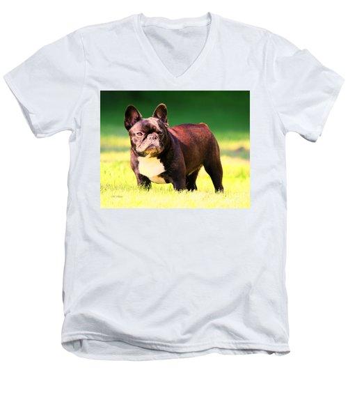 King's Frenchie - French Bulldog Men's V-Neck T-Shirt