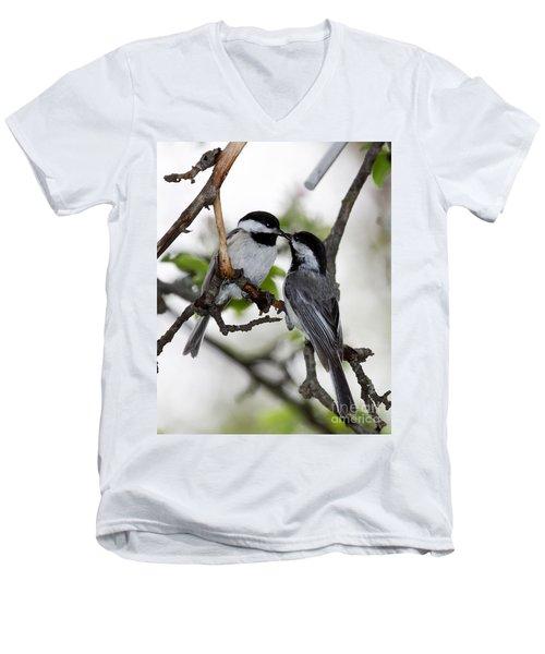 Kissing Chickadees Men's V-Neck T-Shirt