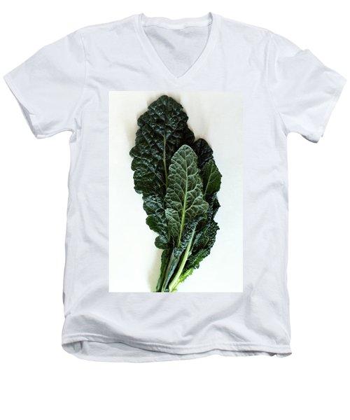 Lacinato Kale Men's V-Neck T-Shirt