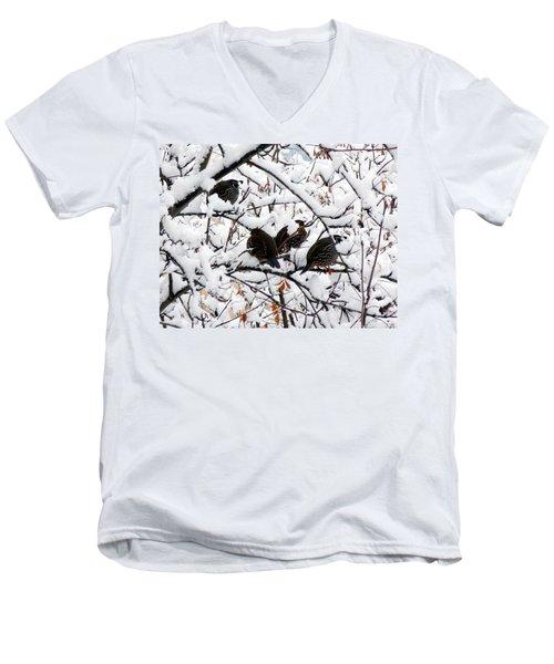 Lake Country Quail Men's V-Neck T-Shirt