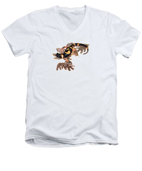 Large Blotched Salamander On Oak Leaves Men's V-Neck T-Shirt by Cindy Hitchcock