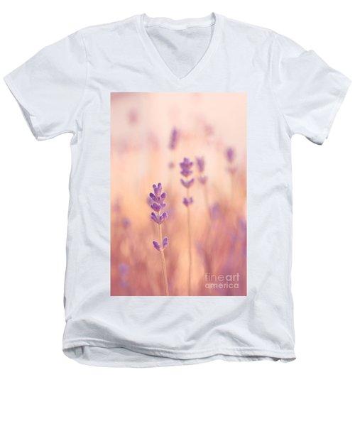 Lavandines 02 - S09a Men's V-Neck T-Shirt