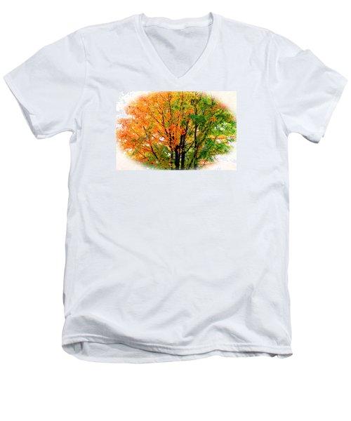 Leaves Changing Colors Men's V-Neck T-Shirt