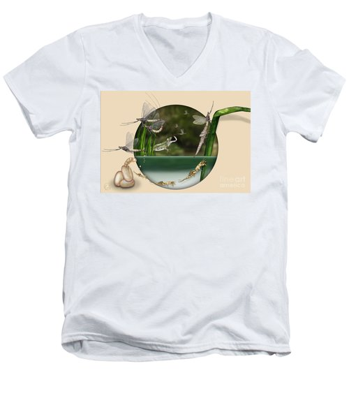 Life Cycle Of Mayfly Ephemera Danica - Mouche De Mai - Zyklus Eintagsfliege - Stock Illustration - Stock Image Men's V-Neck T-Shirt