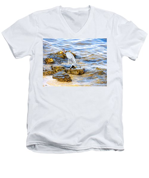 Little Blue Heron Men's V-Neck T-Shirt
