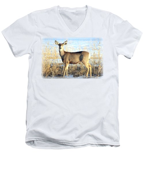 Men's V-Neck T-Shirt featuring the photograph Lonesome Doe Sunset by Barbara Chichester