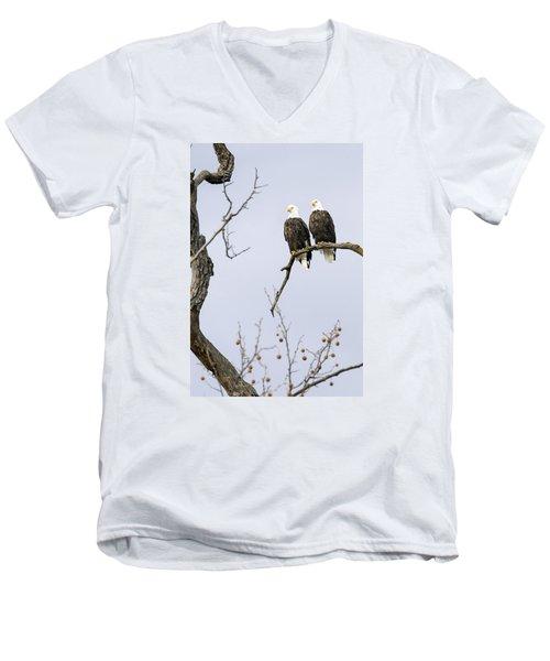 Majestic Beauty 1 Men's V-Neck T-Shirt by David Lester