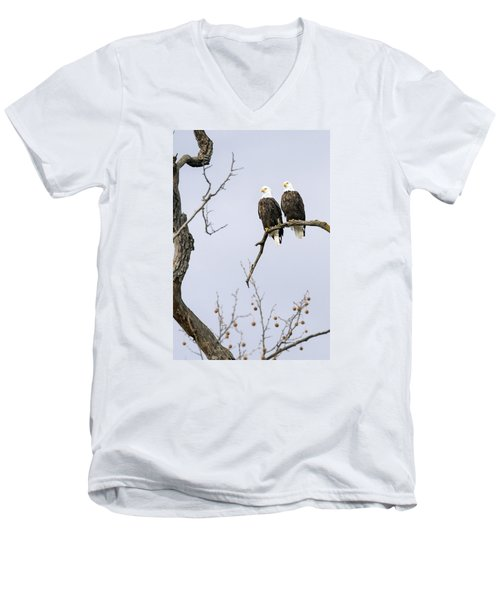 Majestic Beauty 1 Men's V-Neck T-Shirt