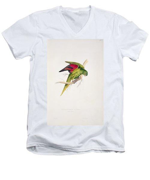 Matons Parakeet Men's V-Neck T-Shirt by Edward Lear