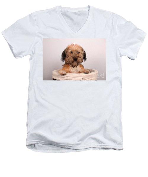 Max 2 Men's V-Neck T-Shirt by Randi Grace Nilsberg
