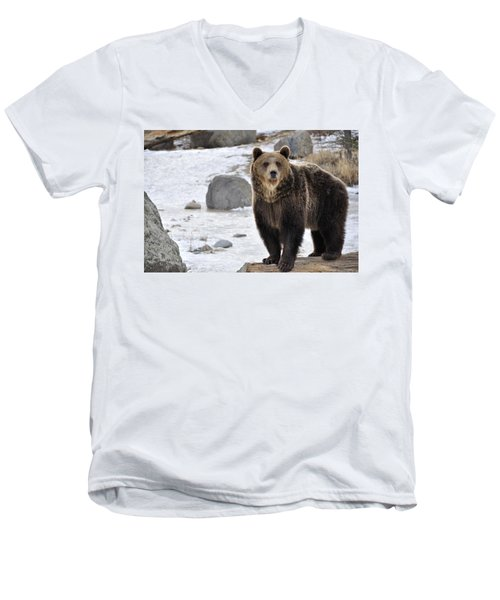 Montana Grizzly  Men's V-Neck T-Shirt