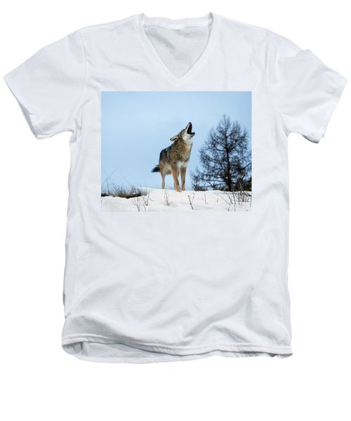 Men's V-Neck T-Shirt featuring the photograph Morning Howl by Jack Bell