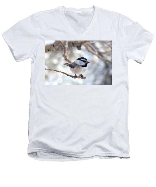 Mountain Chickadee On Branch Men's V-Neck T-Shirt by Marilyn Burton