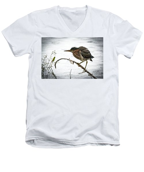 Mr. Green Heron Men's V-Neck T-Shirt