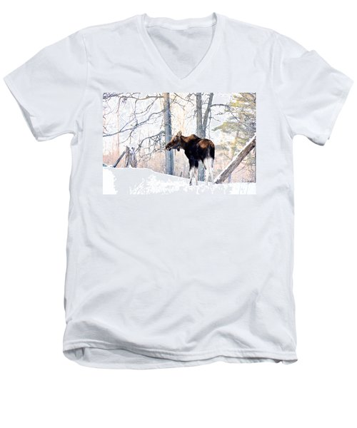 Mr. Moose Men's V-Neck T-Shirt