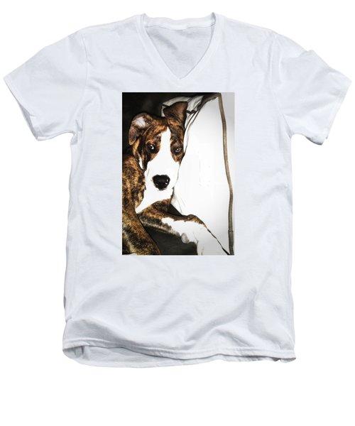 Men's V-Neck T-Shirt featuring the photograph Nap Time by Robert McCubbin