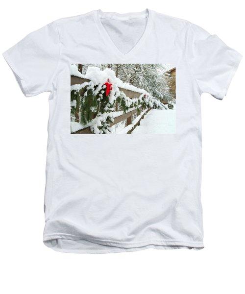 Nature's Decorations Men's V-Neck T-Shirt