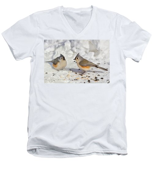 Nice Pair Of Titmice Men's V-Neck T-Shirt