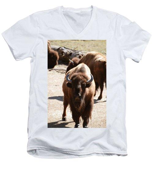 North American Bison Men's V-Neck T-Shirt by DejaVu Designs