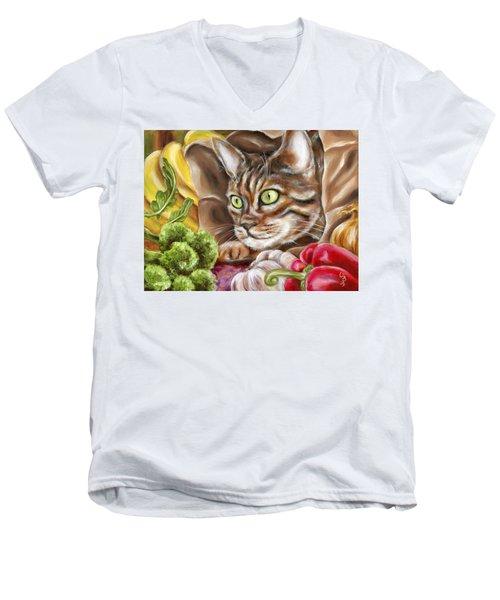 Ok Now What Men's V-Neck T-Shirt