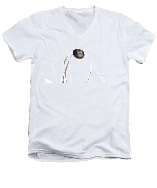 Men's V-Neck T-Shirt featuring the photograph Olga Cat Reflected In Drawer Knob by Kathy Barney