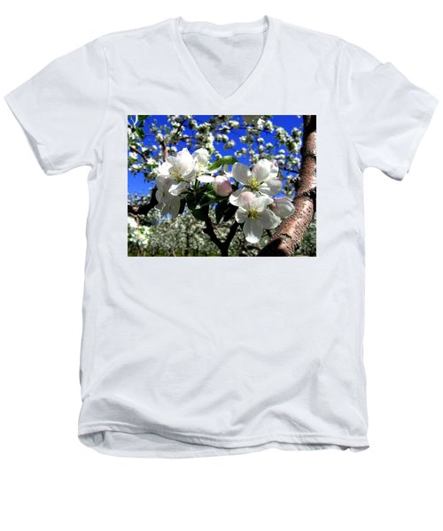 Orchard Ovation Men's V-Neck T-Shirt by Will Borden