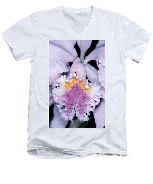 Orchid 2 Men's V-Neck T-Shirt by Andy Shomock
