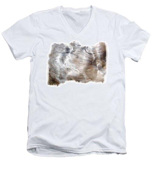 Oregon Driftwood Men's V-Neck T-Shirt