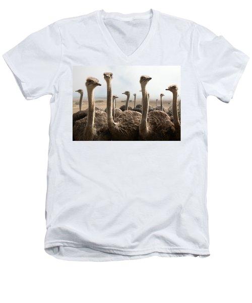 Ostrich Heads Men's V-Neck T-Shirt
