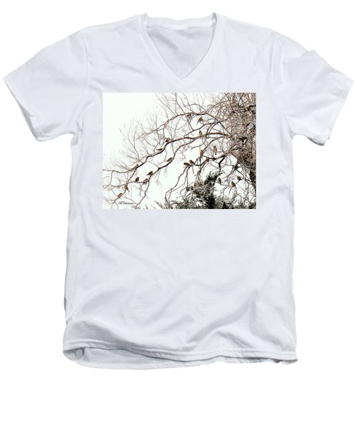 Men's V-Neck T-Shirt featuring the photograph Out On A Limb First Snow by Barbara Chichester