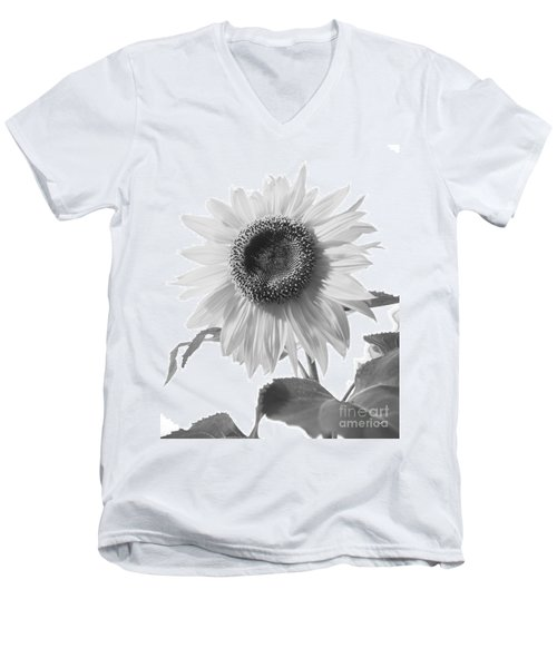 Over Looking The Garden Men's V-Neck T-Shirt by Alana Ranney